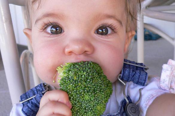Треть россиян сочла вегетарианство вредным. 390401.jpeg