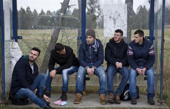 В Косове из-за 50-процентной безработицы молодёжь вступает в террористические организации. Молодежь Косова