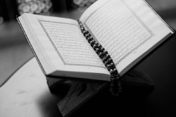 Голландский политик принял ислам после работы над книгой с его критикой. 398409.jpeg