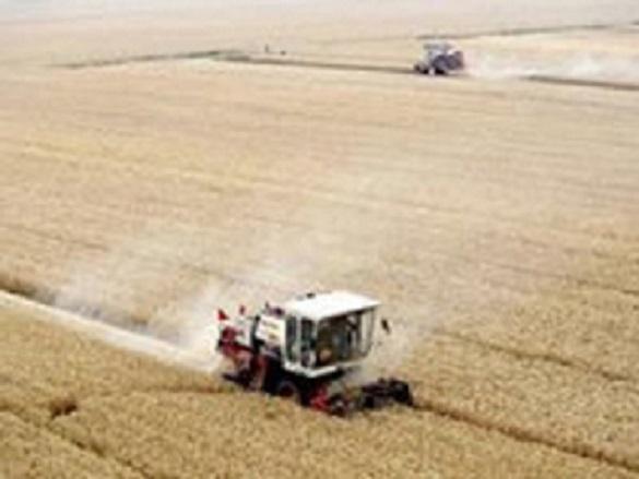 Кирилл Черкасов: Дефицит зерна России не грозит.