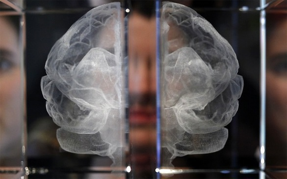 Нейробиологи раскрыли эффект дежавю. Нейробиологи раскрыли эффект дежавю