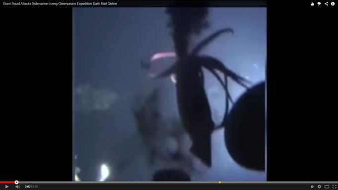 "Кальмар-монстр напал на субмарину ""Гринпис"". ВИДЕО. 301428.png"