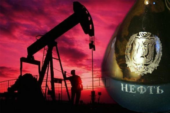 Украинский министр объяснил, зачем Киев закупает российскую нефть через Белоруссию. 397428.jpeg