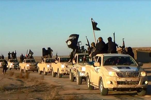 Кипр опасается прихода ИГИЛ в Средиземноморье и оказывает Ливану военную поддержку. 300429.jpeg