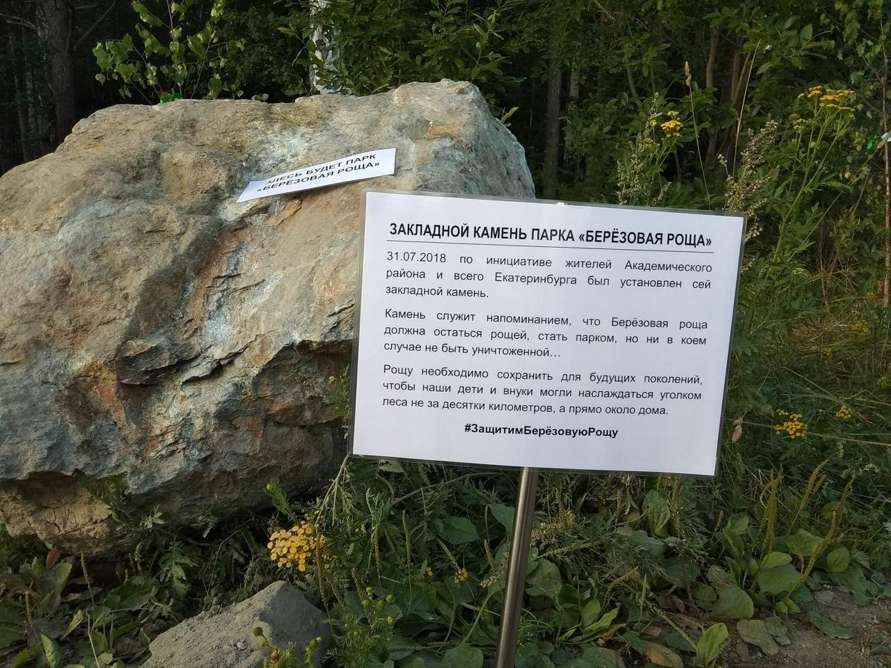 В Екатеринбурге вопреки воле жителей пытаются вырубить березовую рощу. 390430.jpeg
