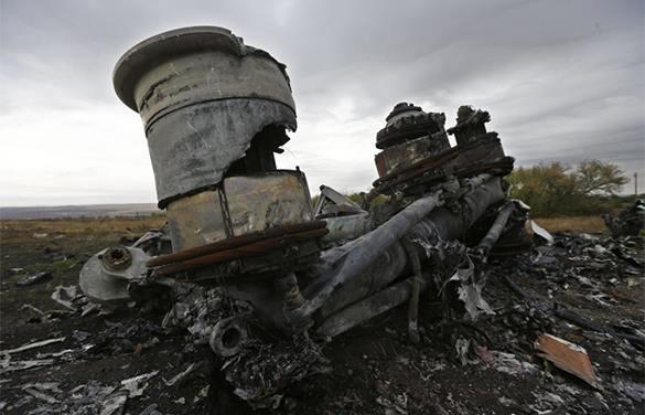 Расследование: Германия заранее знала об опасности полетов над Донбассом. 318435.jpeg