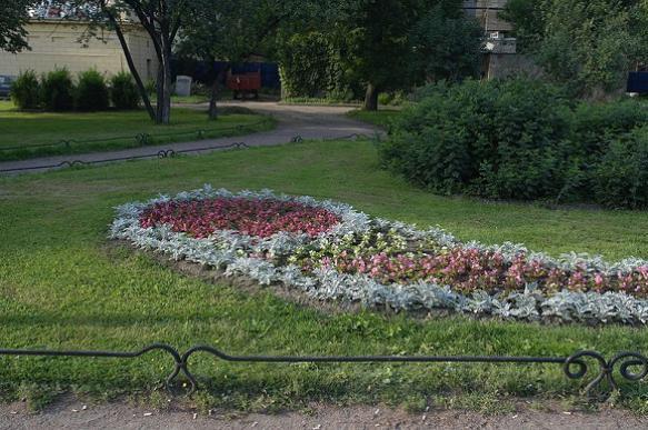 Выбираем газон для дачного участка. 395440.jpeg