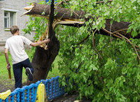 Ураган и гроза оставили жителей Чувашии без света. uragan