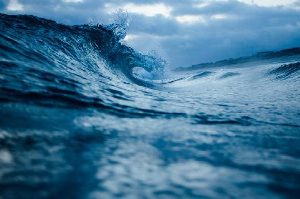 Опасно ли для здоровья заниматься сексом в в океане