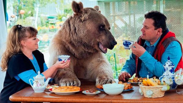 Американец подружился с медведем. 393444.jpeg