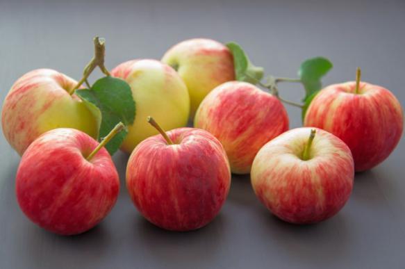 Шесть способов хранения яблок. 394444.jpeg