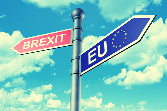 Назад в прошлое: в Британии новая партия выступила против Brexit. Назад в прошлое: в Британии новая партия выступила против Brexit