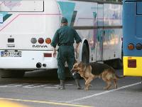 Теракт в Бургасе – безумие загнанного зверя. Фото: АР