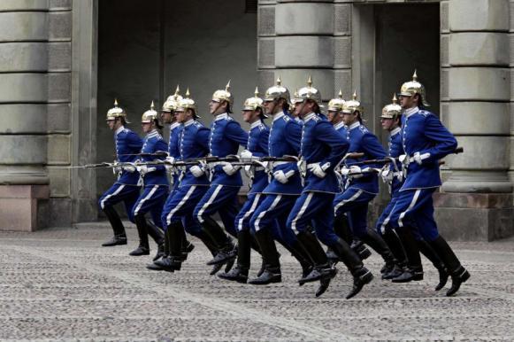 Шведы думают отправить армию под Донецк. Шведы думают отправить армию под Донецк