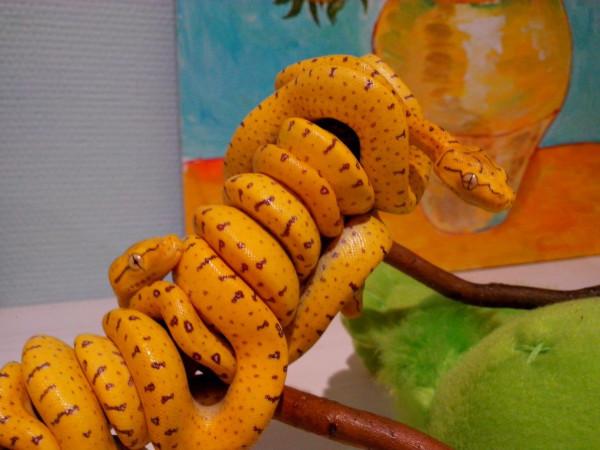 Житель Ростова завел дома 20 змей. 393450.jpeg