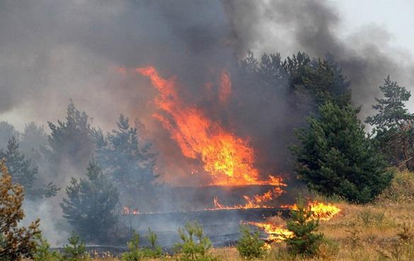 Под Волгоградом детский лагерь эвакуируют из-за природных пожаров. Под Волгоградом детский лагерь эвакуируют из-за природных пожаро