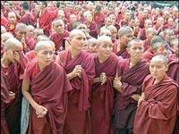 Тибетские монахи встали в очередь за прививкой от нового гриппа