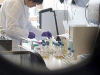 Германия объявила об окончании эпидемии кишечной инфекции. 242452.jpeg