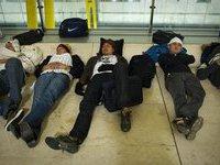 Московские гастарбайтеры просят власти отправить их домой. 244452.jpeg