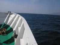 Траулер затонул в Беринговом море. 259456.jpeg