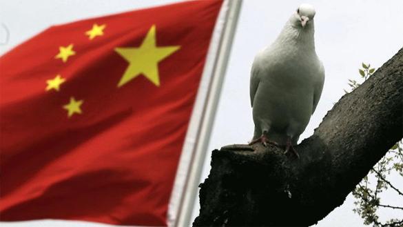 Китай сделал G7 выговор за безответственность. Китайский флаг, сокол