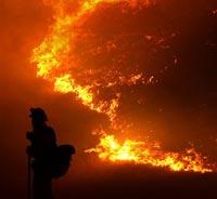 В Оренбурге из-за поджога травы сгорели 16 домов
