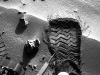 Curiosity. 272467.jpeg
