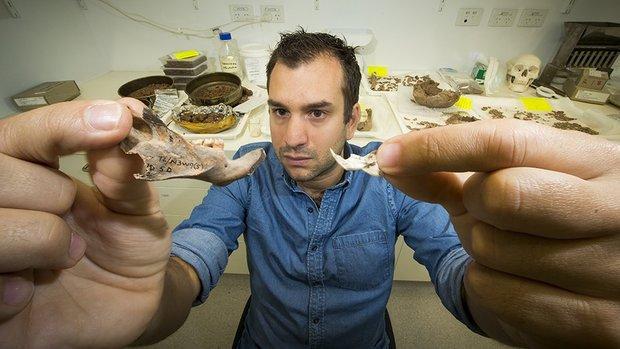 Джульен Луйс представляет кости найденных крыс