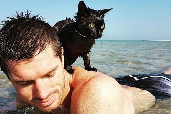 В Австралии кошка полюбила купаться в океане. В Австралии кошка полюбила купаться в океане