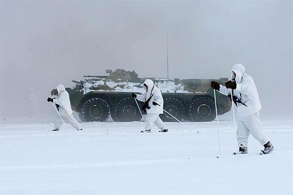 В России созданы микророботы для работы в арктических льдах. В России созданы микророботы для работы в арктических льдах