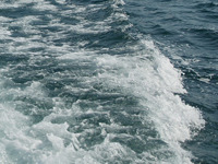 На Волге затонул теплоход: судьба сотни людей неизвестна. 241472.jpeg