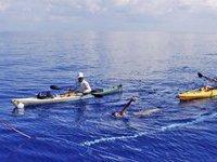 Медузы и шторм помешали пловчихе преодолеть Флоридский пролив. 268472.jpeg