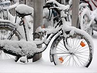 Растет число жертв снежной бури в США. 248478.jpeg