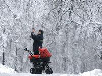 Прогнозы: московский мороз пока не собирается сдаваться. 253479.jpeg
