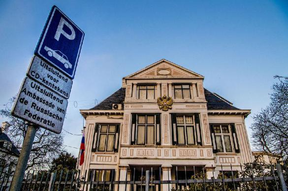 ЦБ Нидерландов не планирует запрещать криптовалюты. 390484.jpeg