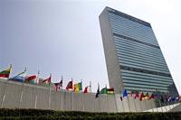 Свиной грипп стал темой обсуждения в Совбезе ООН