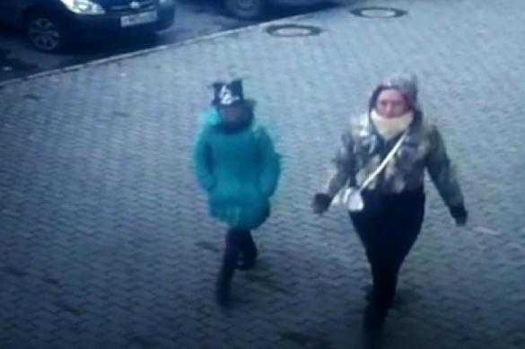 """""""Девочка с хомячком"""", терроризировавшая Барнаул, наконец идентифицирована. 379496.jpeg"""