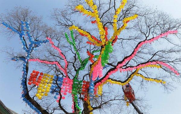 Сеул готовится отметить 2 557 лет со дня рождения Будды. 315503.jpeg