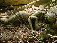 В Британии похоронили 700-летнюю девушку