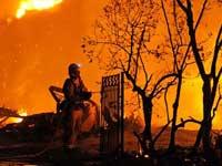Лесные пожары выгнали из американского города 30 тысяч человек