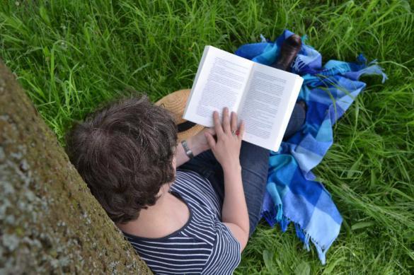 Учимся читать заново: цель — книга в день. 383508.jpeg