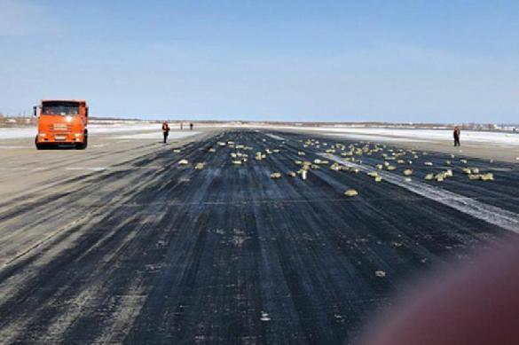 Сотни якутов примчались собирать выпавшее из самолета золото. 384511.jpeg