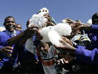 Южную Африку завалило снегом