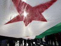 Посол Сирии: Россия поставляет в Дамаск только оборонительное вооружение. 260516.jpeg