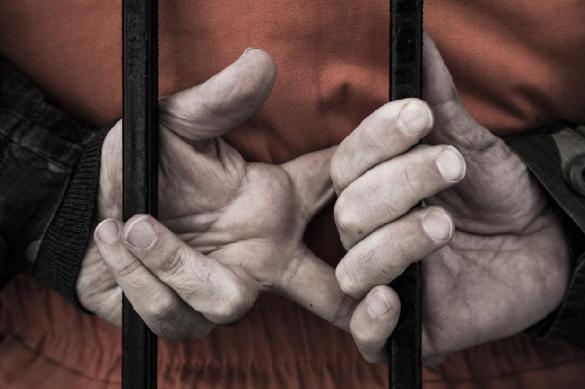 Создателя электрического стула отлучили от казней в США. 394516.jpeg