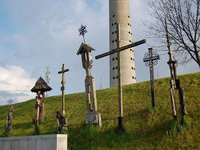 Литовского политика все же осудили за