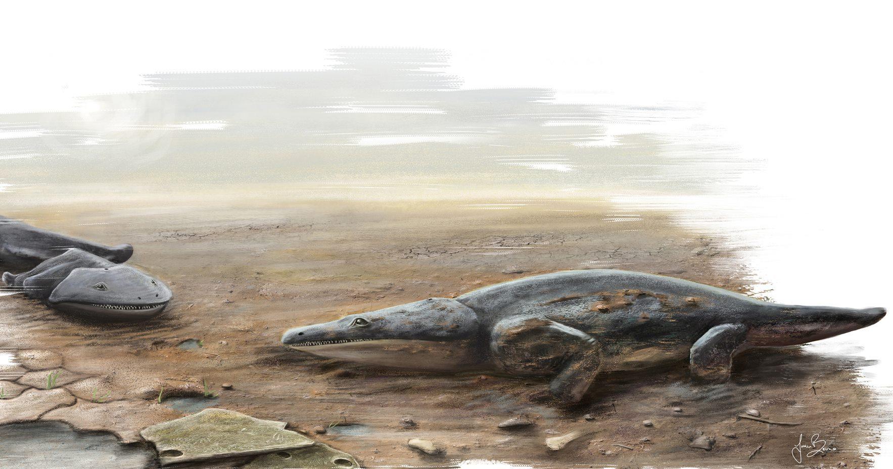 Палеонтологи нашли в Португалии