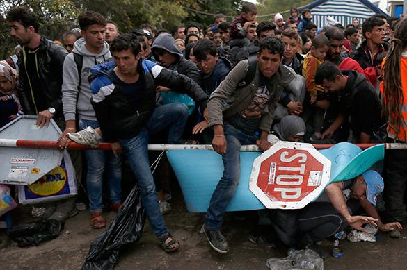 Беженцы в дании заговорили о территории шариата