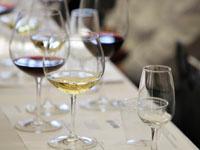 Владельцы отелей в Болгарии жалуются на пьяных туристов. 243522.jpeg