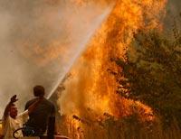 В Ростовской области произошел пожар на магистральном